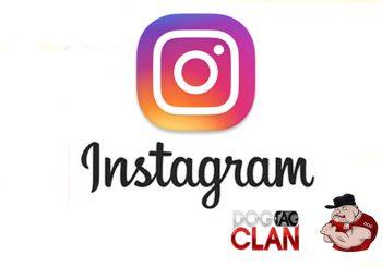 Dogtagclan Instagram