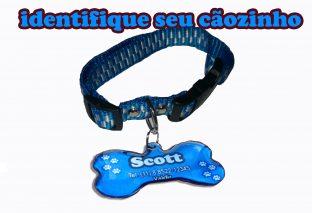 Placa Identificação Cães Gato Gravada Gravação Personalizada