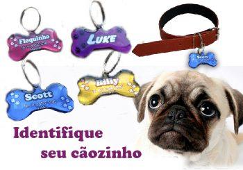 Placa de identificação para cães e gatos